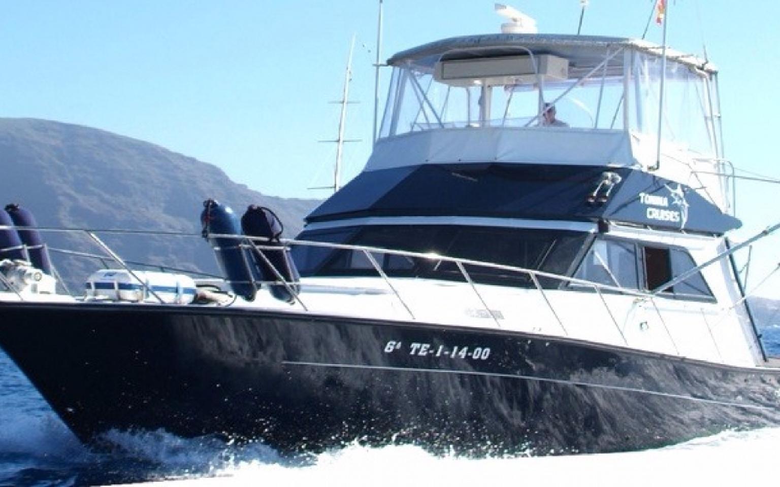 Cruz del sur boat 3h boat trip tenerife host boat for Fishing boat trips